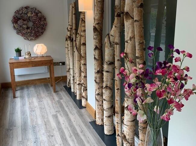 Birch trees inside a house